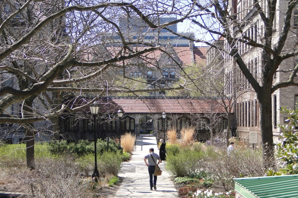 Central_Campus_Scene_-_University_of_Chicago_-_Illinois_-_USA_-_05