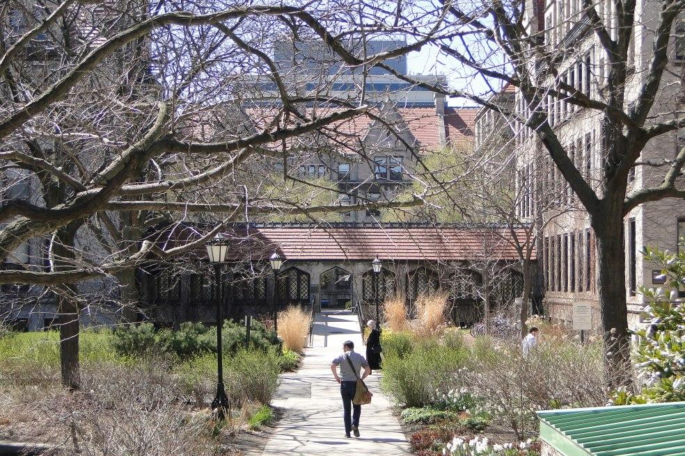 Central_Campus_Scene_-_University_of_Chicago_-_Illinois_-_USA_-_05